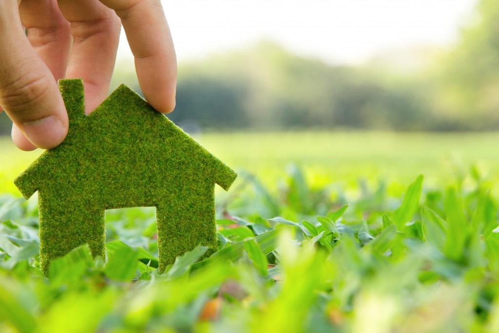 green home concept