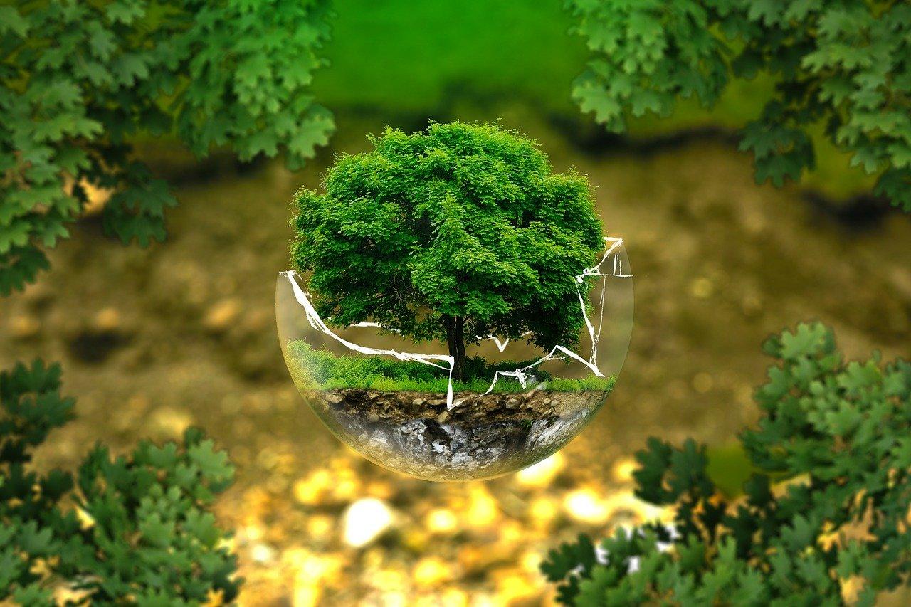environmental home