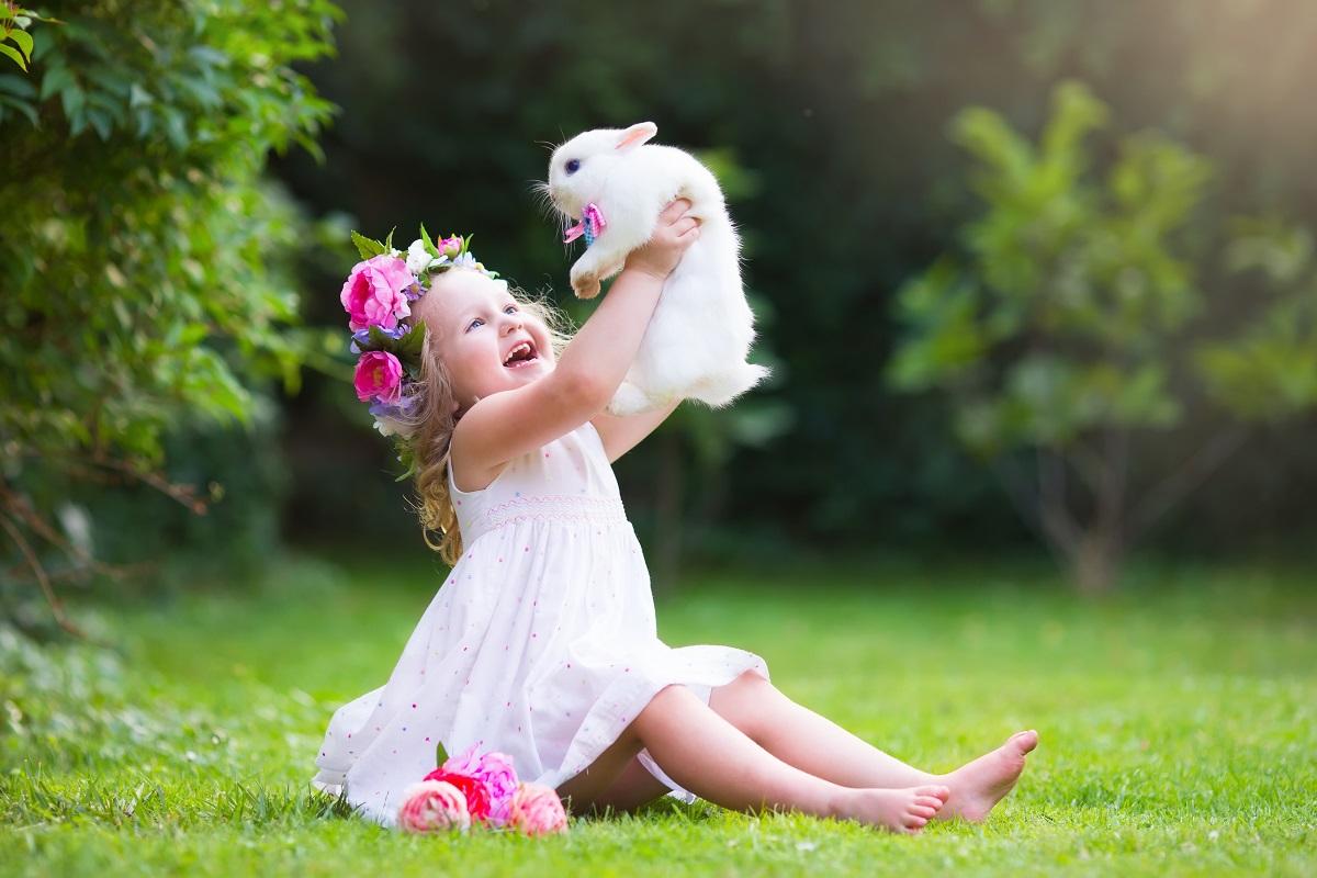 kid with rabbit