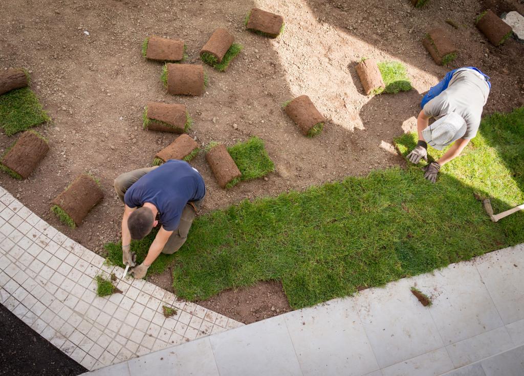 men installing natural grass
